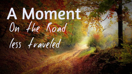 Road Less Traveled >> A Moment On The Road Less Traveled Agewise